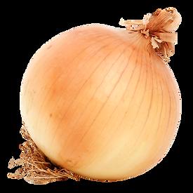 onion-transparent-background-16.png