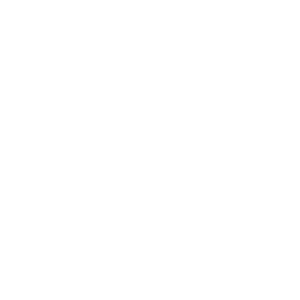 CED Consulting (3).png