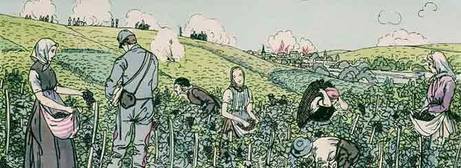 "© AFP/Gianni Dagli Orti | From an engraving, entitled ""Vendanges 1914"", showing vineyard workers picking under a ""rain of shells"""