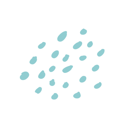 turqouise dots.png