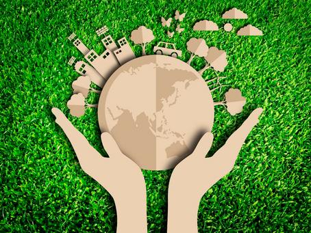 Meio ambiente e as formas de vida... vida de quem?