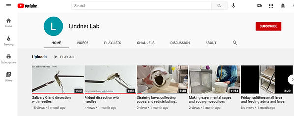Lindner Lab YouTube Channel Image.jpg