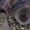 Thumbnail: Fève tonka (entières) - 50g