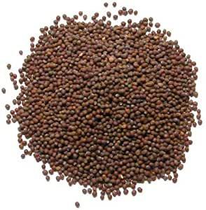 Moutarde brune (graines entières) -  50g