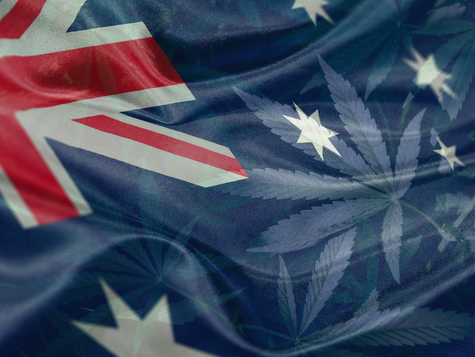 News from the Australian Cannabis Industry