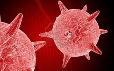 Becoming Disease Free | About Herpes