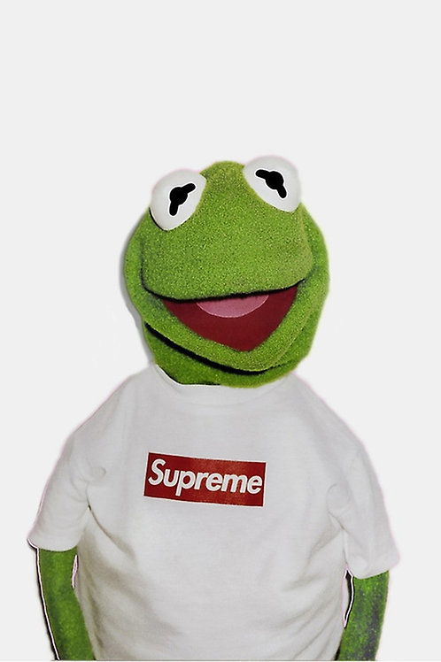 Supreme x Kermit the frog Custom Kicks Sneaker Poster Art