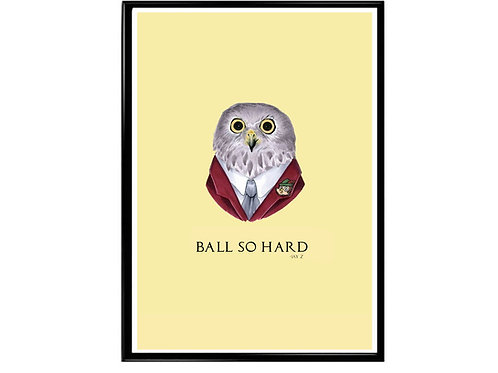 Ball So Hard Jay Z Quote Poster, Funny Animal Art, Rap Music Poster