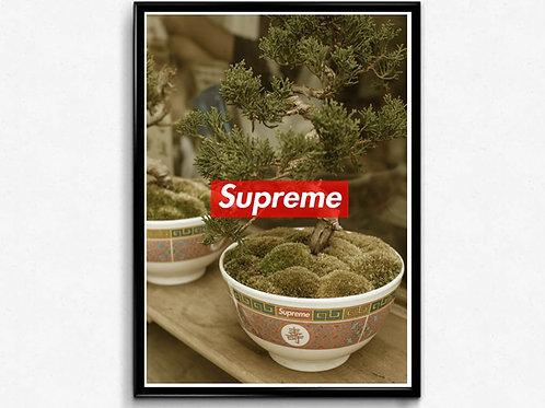 Supreme Bonsai Inspired Poster, Wall Art Poster, Hypebeast Poster, Street Art
