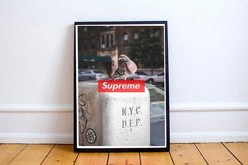 Urban Art Posters, Supreme Pigeon Poster, Kaws Art Print Sneaker Art Work