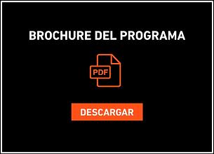 programa internacional virtual design co