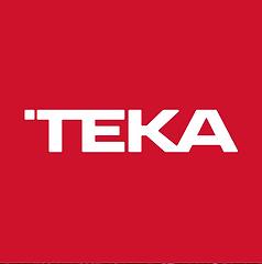 Logo Teka 2020.png