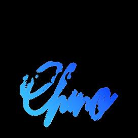 VOC Dark with Blue.png
