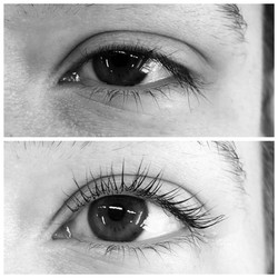 Before and After Lash Lift and Tint