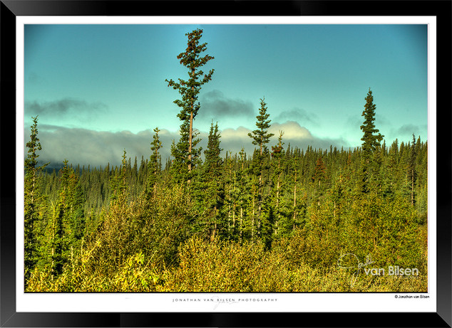 Images of Alaska - IOAL-006.jpg
