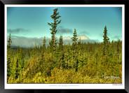 Images of Alaska - IOAL-006.jpg