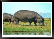 Images of East Africa - 002 - © Jonathan van Bilsen.jpg