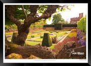 Images_of_Hampton_Court_-_016_-_©Jonath