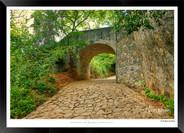 Images of Dambulla - 013 - Jonathan van