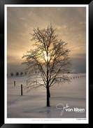 Winter Sunset - Jonathan van Bilsen.jpg