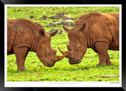Images of East Africa - 023 - © Jonathan van Bilsen.jpg