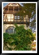 Images of Peles Castle - 002 - Jonathan
