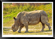 Images of East Africa - 028 - © Jonathan van Bilsen.jpg