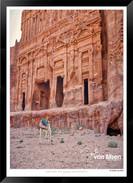 Images_of_Petra_-_016-_©_Jonathan_van_B