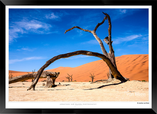 Images of the Dead Pan - 007 - © Jonatha