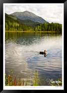 IOYU-006 - Images of the Yukon - Jonatha