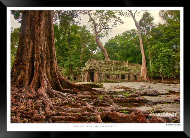 Trees of Angkor Thom - 029 - Jonathan va