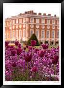 Images_of_Hampton_Court_-_012_-_©Jonath