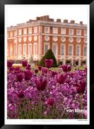Images_of_Hampton_Court_-_012_-_©Jonath