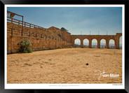 Images_of_Jerash_-_002-_©_Jonathan_van_