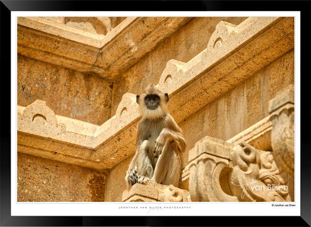 Images of Aanuradhapura - 014 - Jonathan