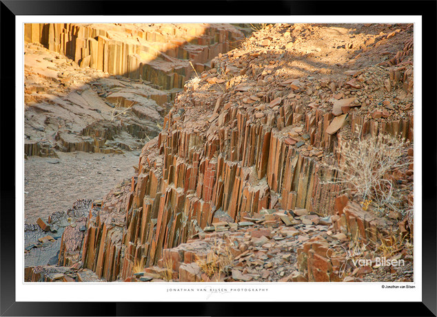 Images_of_the_African_Petrified_Forest_-