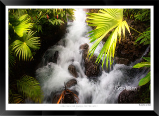 Images_of_Costa_Rica_-_012_-_©_Jonathan_