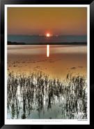 Sunrise beach - IOPP-021 - Jonathan van