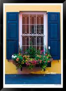 Blue and Yellow  - IOGA-001 - Jonathan v