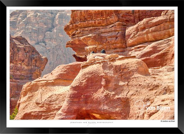 Images_of_Petra_-_025-_©_Jonathan_van_B