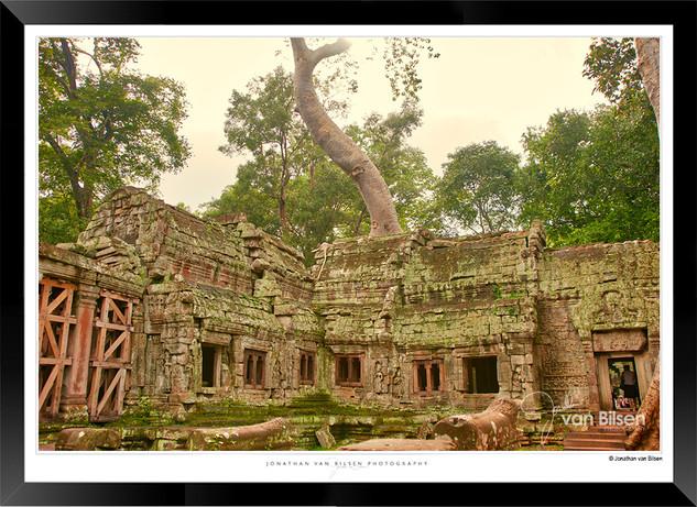 Trees of Angkor Thom - 028 - Jonathan va