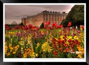Images_of_Hampton_Court_-_023_-_©Jonath