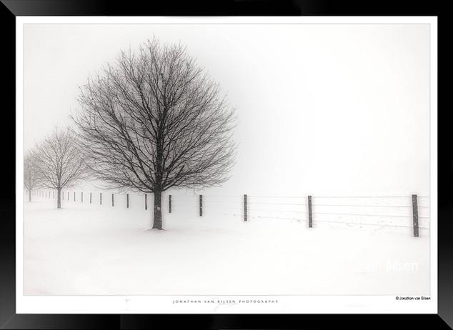 Loneliness - Jonathan van Bilsen.jpg