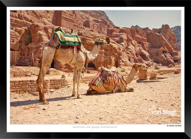 Images_of_Petra_-_026-_©_Jonathan_van_B