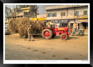 Images_of_Delhi_-__010_-_©Jonathan_van_