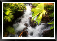 Images of Costa Rica - 012 - © Jonathan