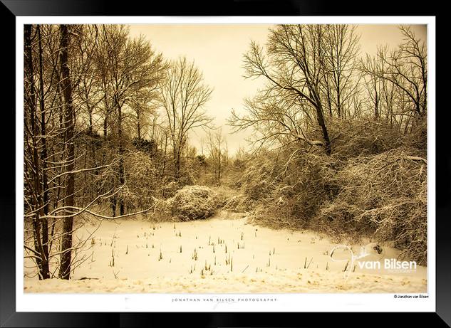 Winter Solitude - Jonathan van Bilsen.jp