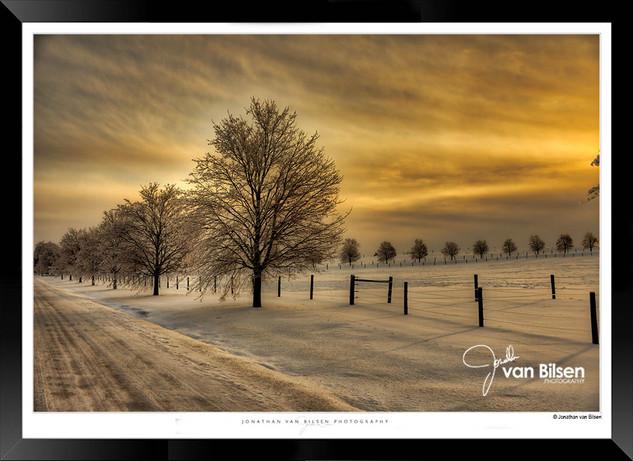 Golden Sunset - Jonathan van Bilsen.jpg