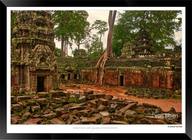 Trees of Angkor Thom - 010 - Jonathan va
