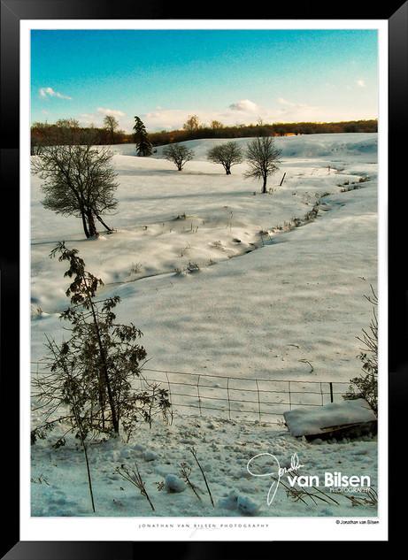 Snowy Sunshine - Jonathan van Bilsen.jpg